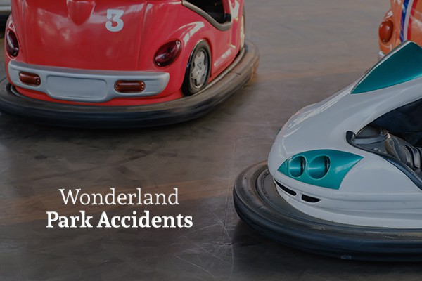 Two bumper cars about to run into each other with the words wonderland park accidents